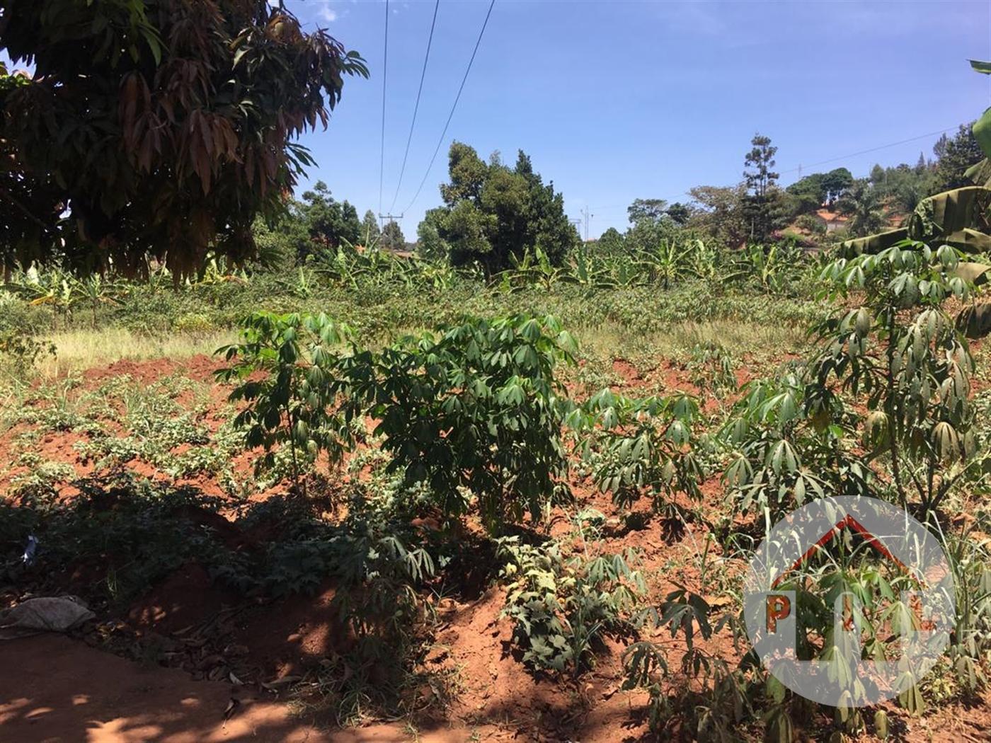 Multi Purpose Land for sale in Kira Wakiso