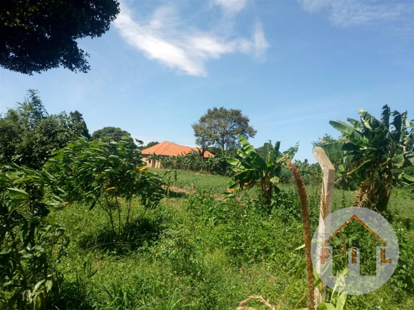 Agricultural Land for sale in Busunjju Wakiso