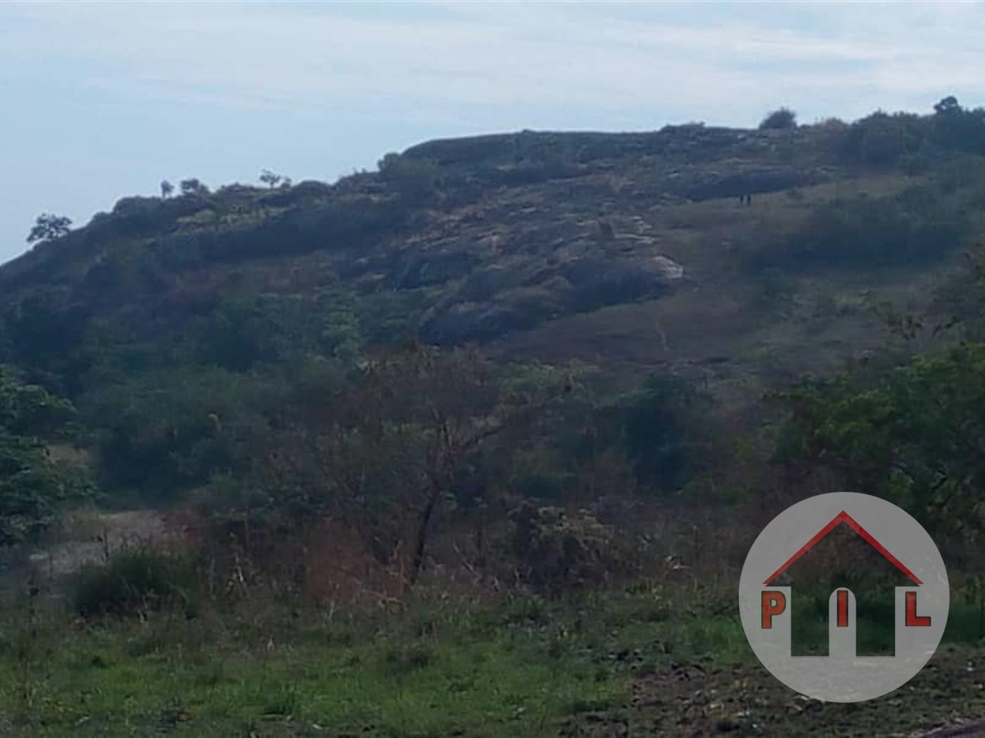 Multi Purpose Land for sale in Masindi Masindi