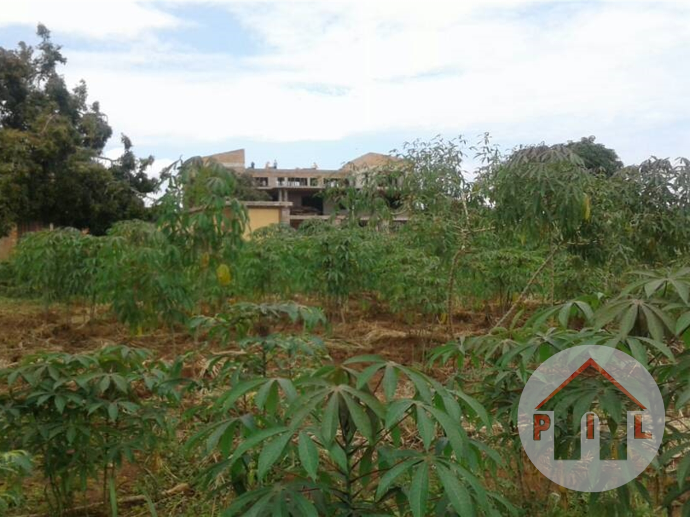Agricultural Land for sale in Busunjju Mityana