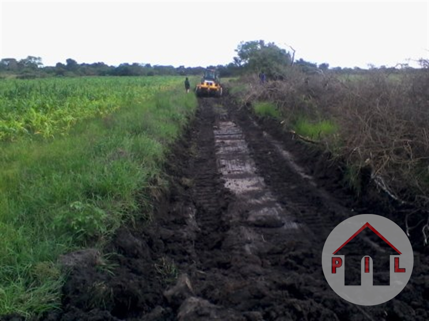 Agricultural Land for sale in Katugo Nakasongola