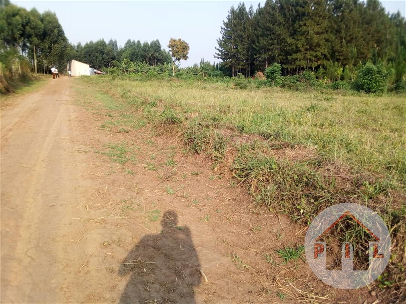 Multi Purpose Land for sale in Bujjuuko Mityana