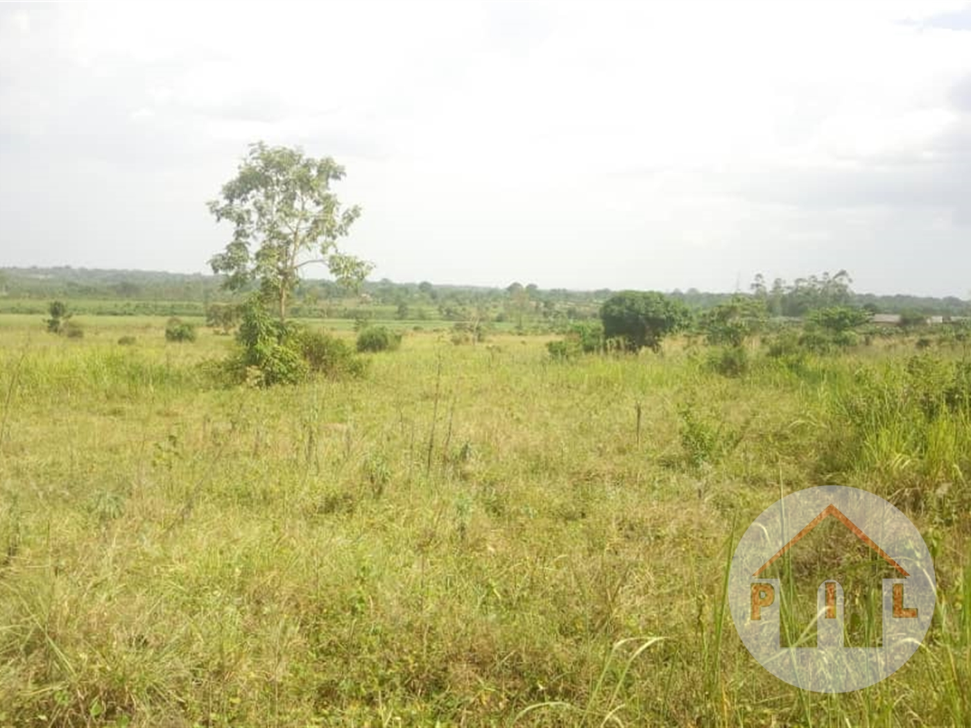 Agricultural Land for sale in Mukono Mukono