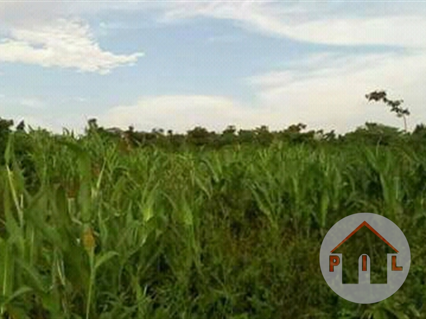 Residential Land for sale in Namawojolo Wakiso