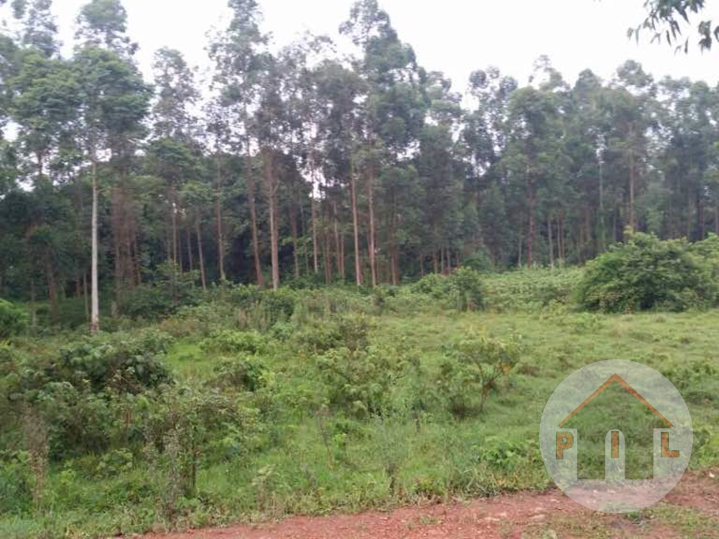 Residential Land for sale in Kulambilo Kampala
