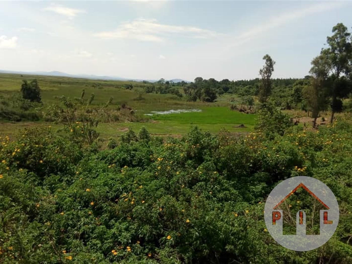 Multi Purpose Land for sale in Kiwenda Wakiso