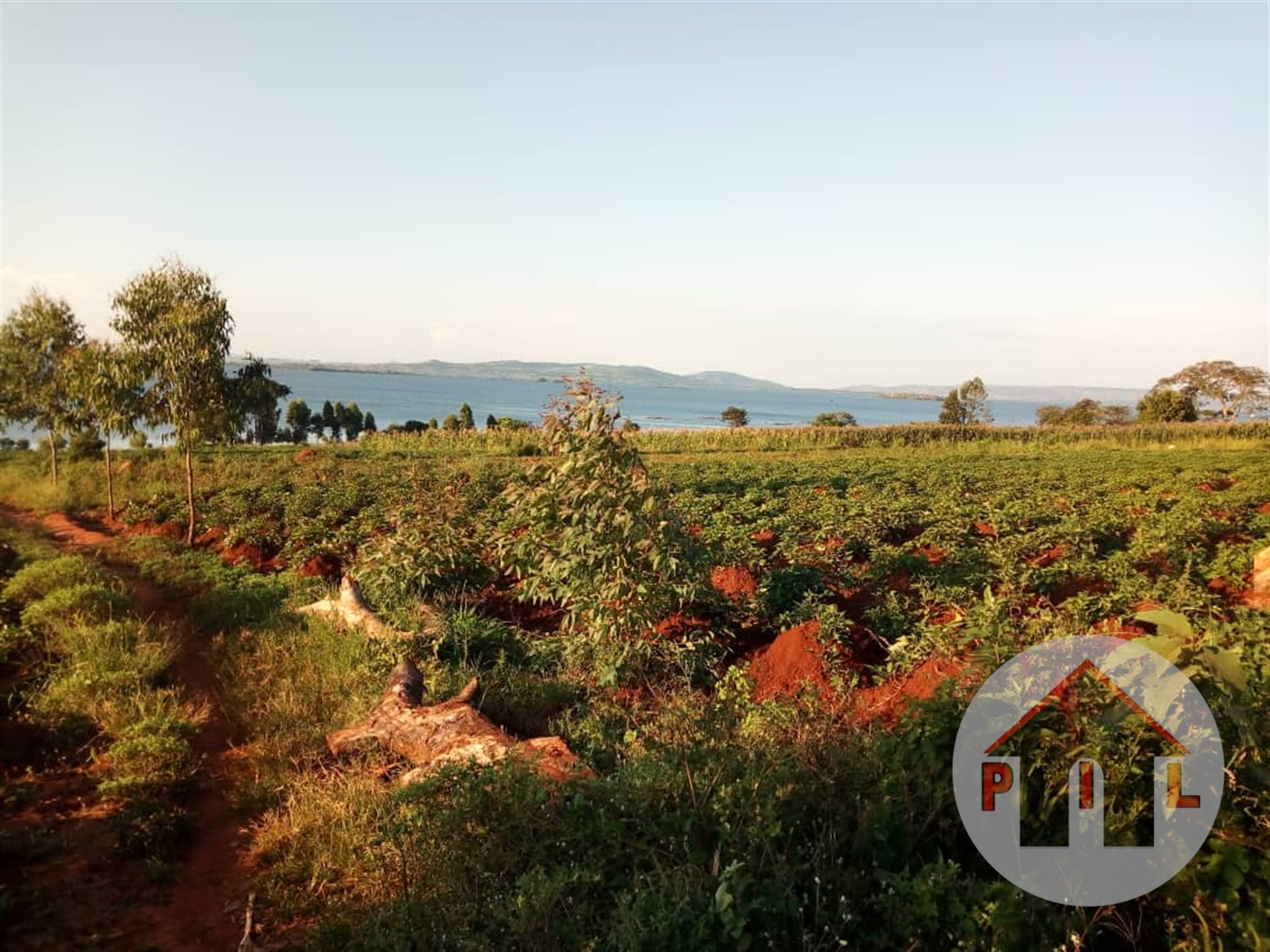 Multi Purpose Land for sale in Garuga Bugiri
