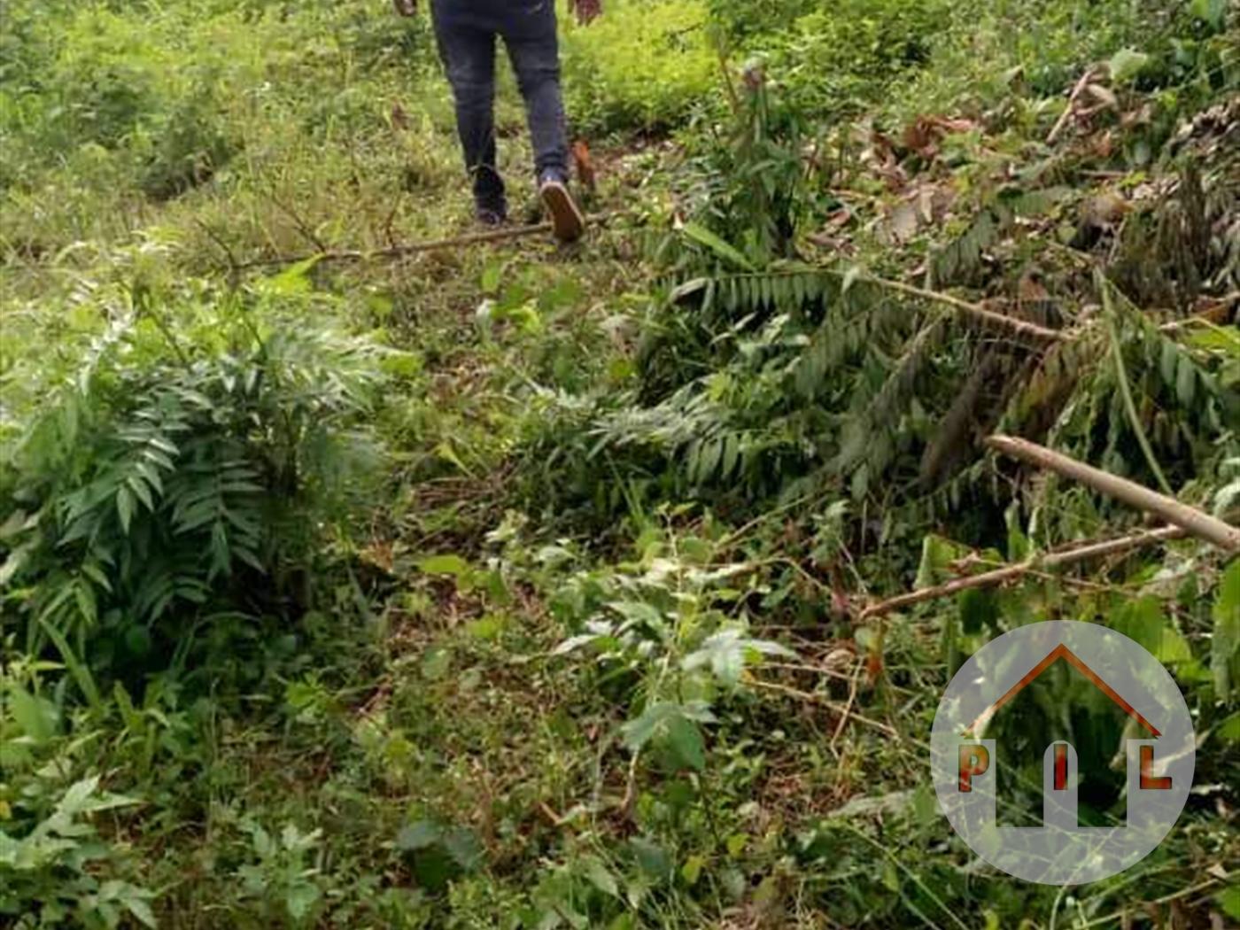 Multi Purpose Land for sale in Kasanjje Wakiso