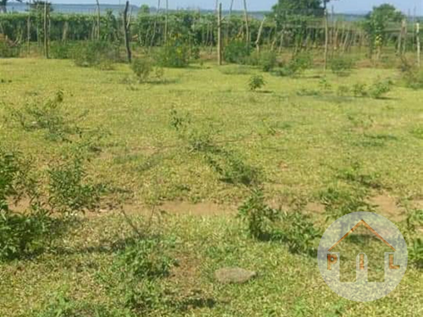 Agricultural Land for sale in Kikyuusa Wakiso