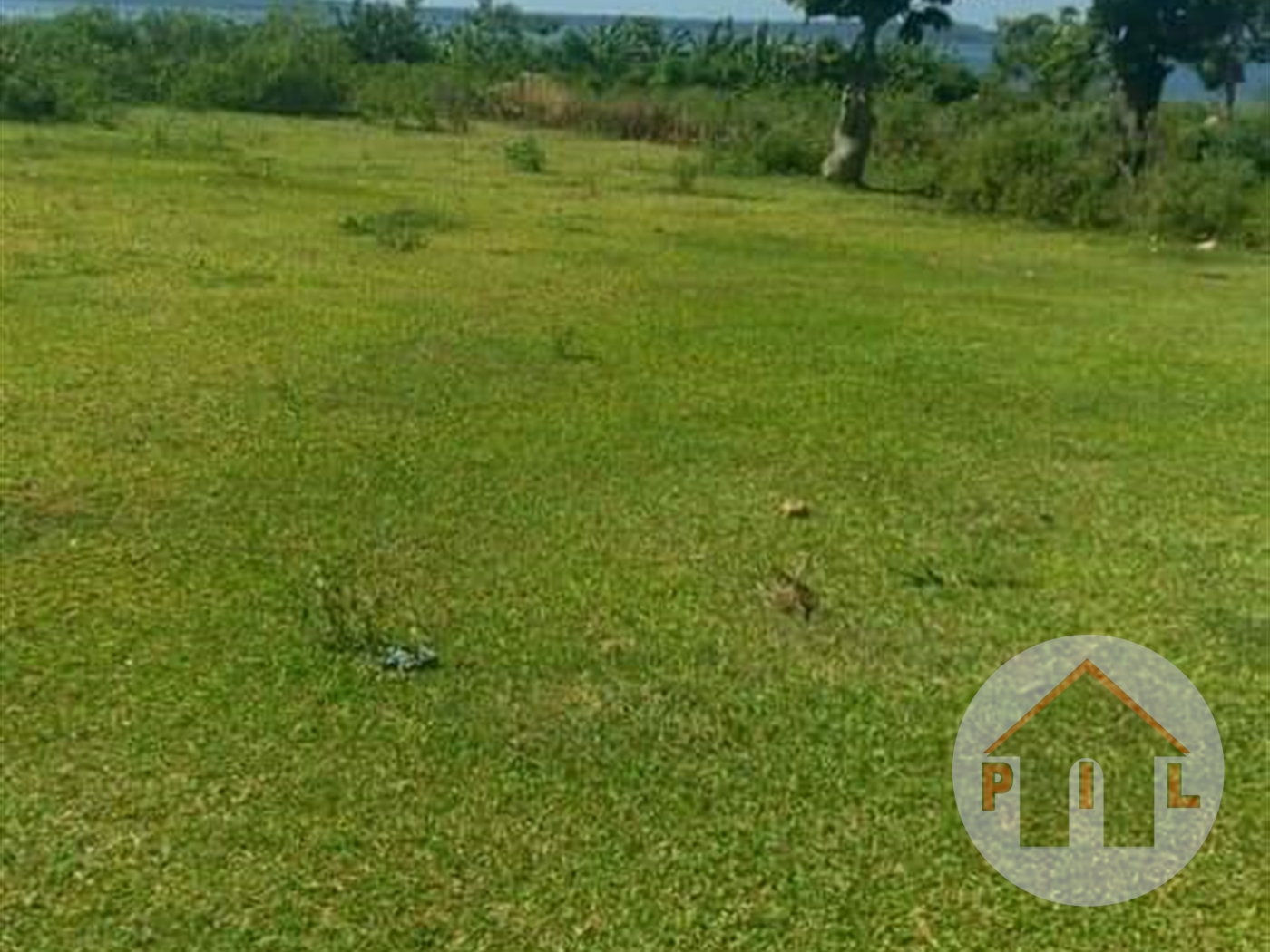Recreational Land for sale in Nkumba Wakiso