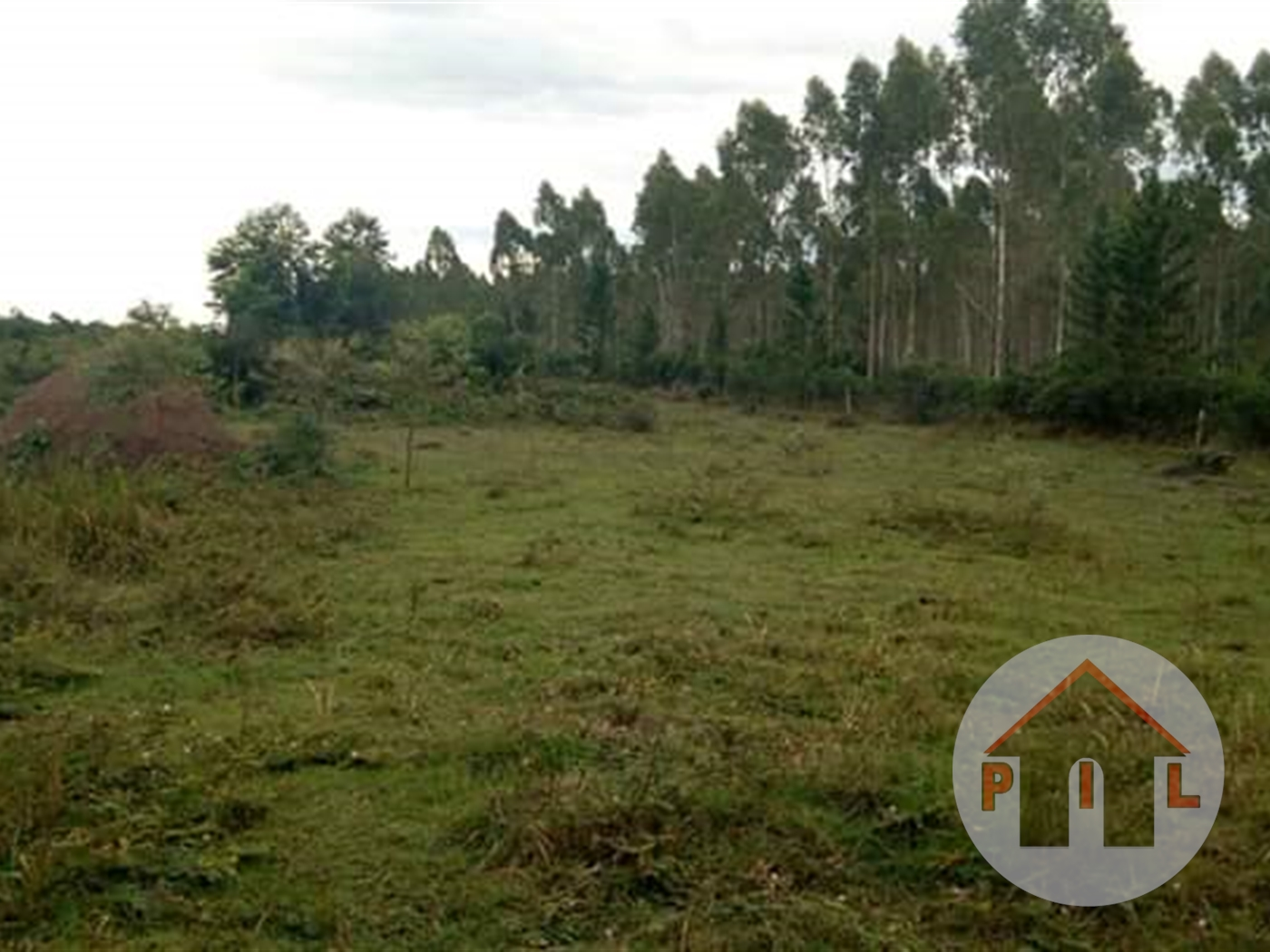 Agricultural Land for sale in Butuntumula Luwero