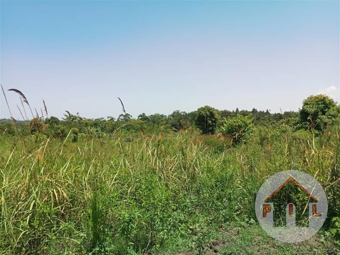 Multi Purpose Land for sale in Ntejeru Mukono