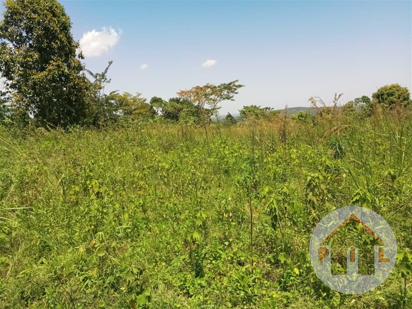 Agricultural Land for sale in Kawanda Wakiso
