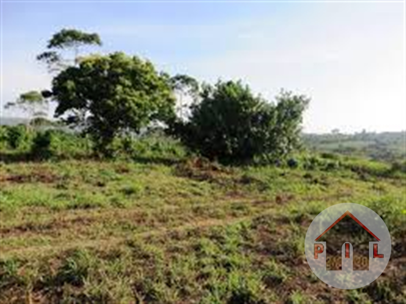 Agricultural Land for sale in Mazzi Luwero