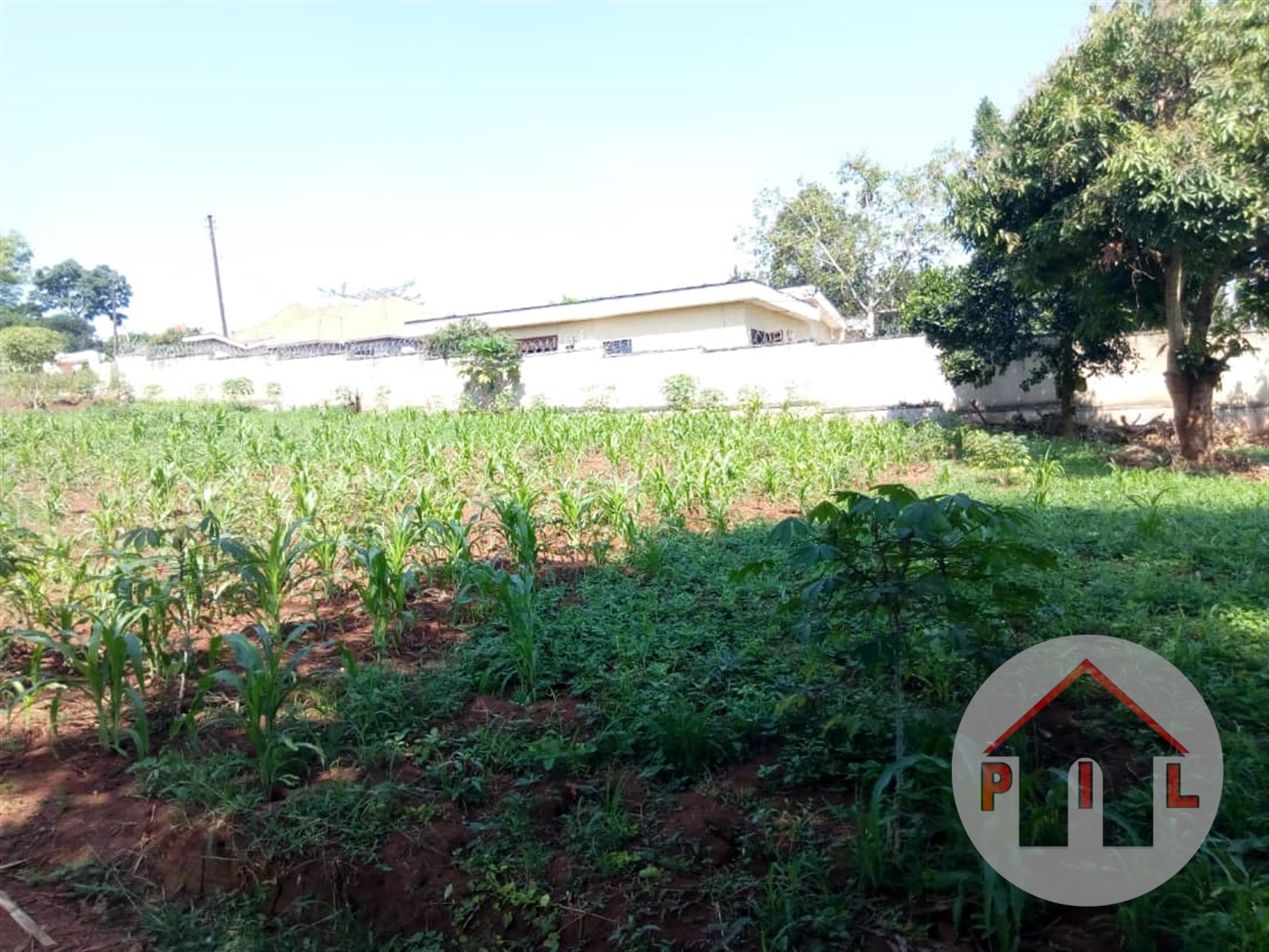 Residential Land for sale in Ruti Mbarara