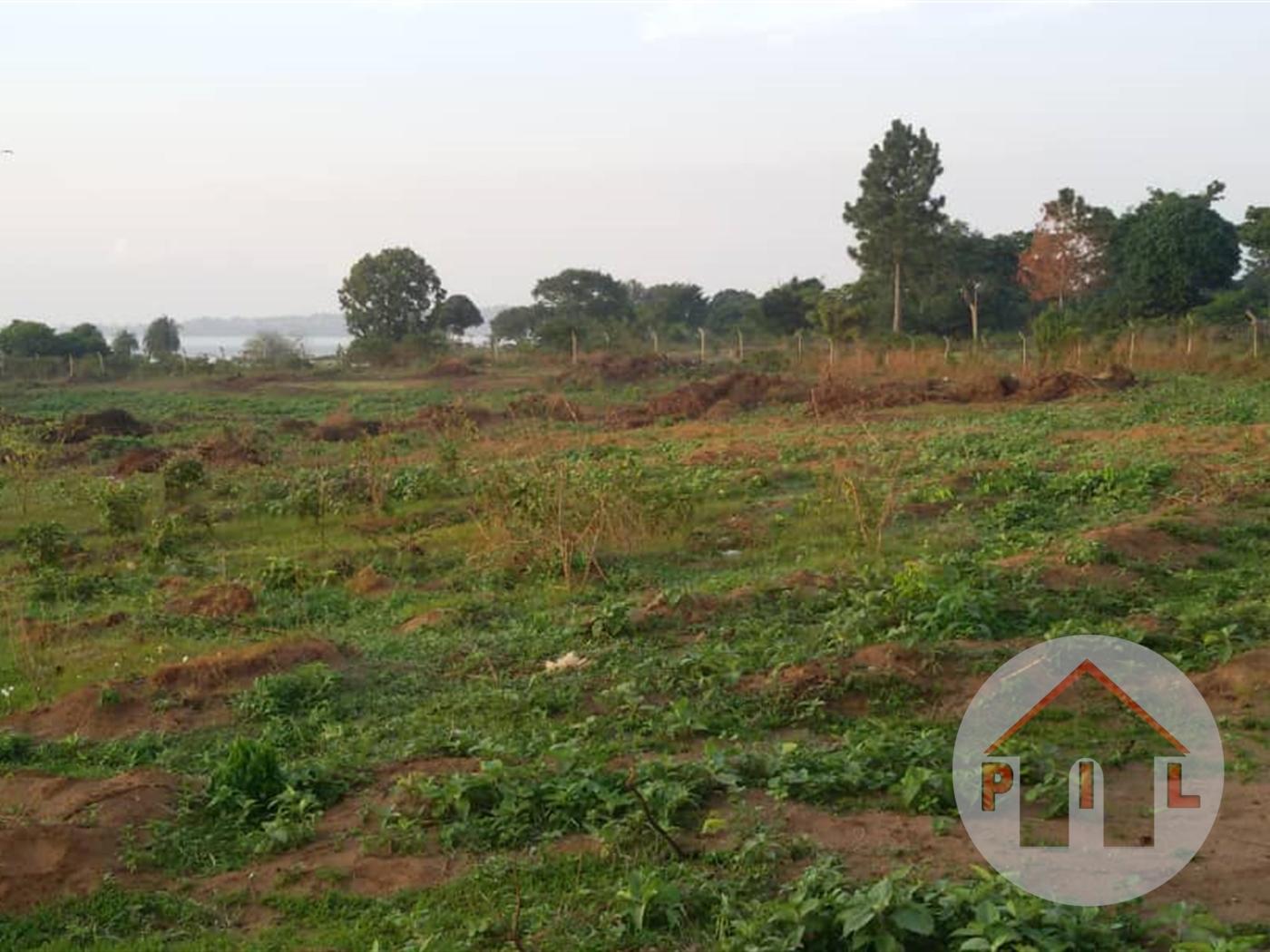 Residential Land for sale in Nsambwe Mukono