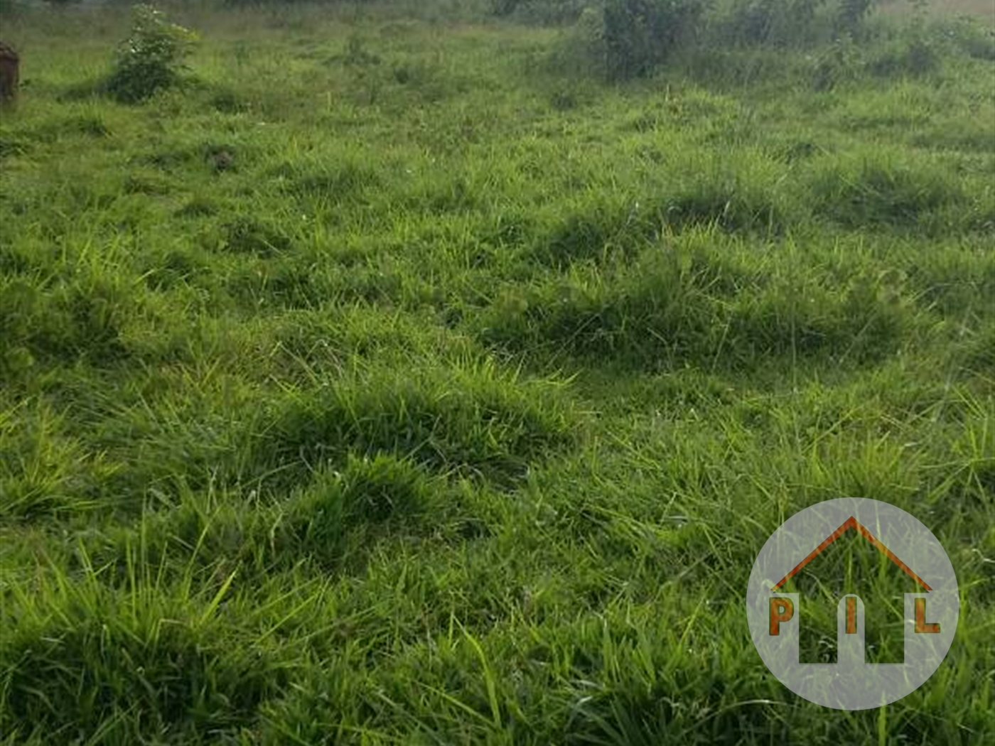 Agricultural Land for sale in Mubende Mubende