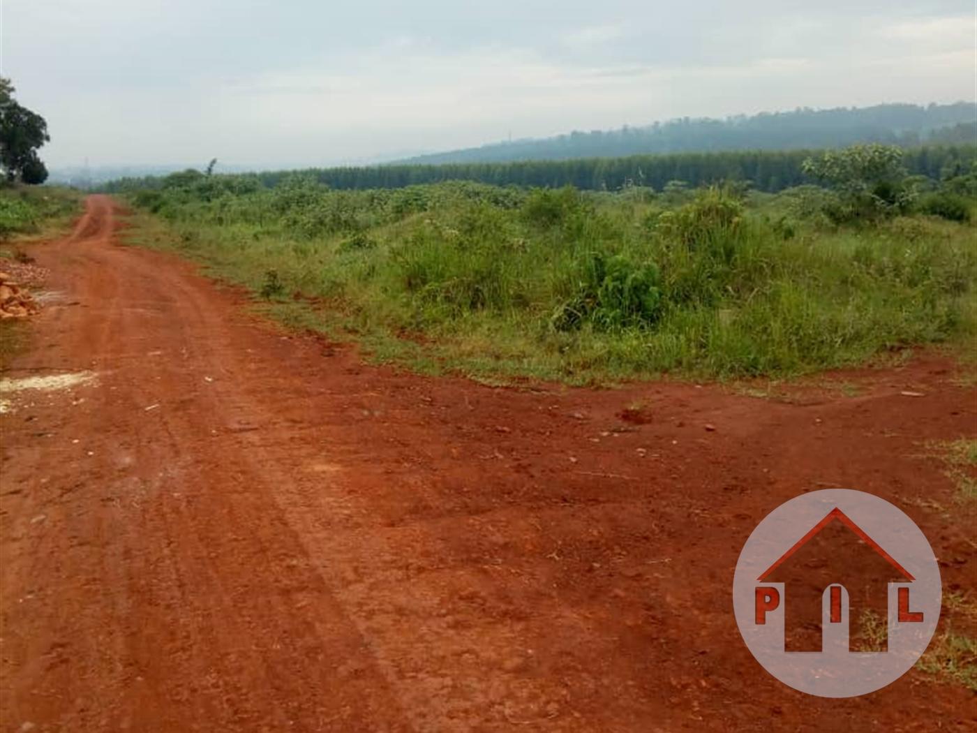 Residential Land for sale in Kisowela Mukono
