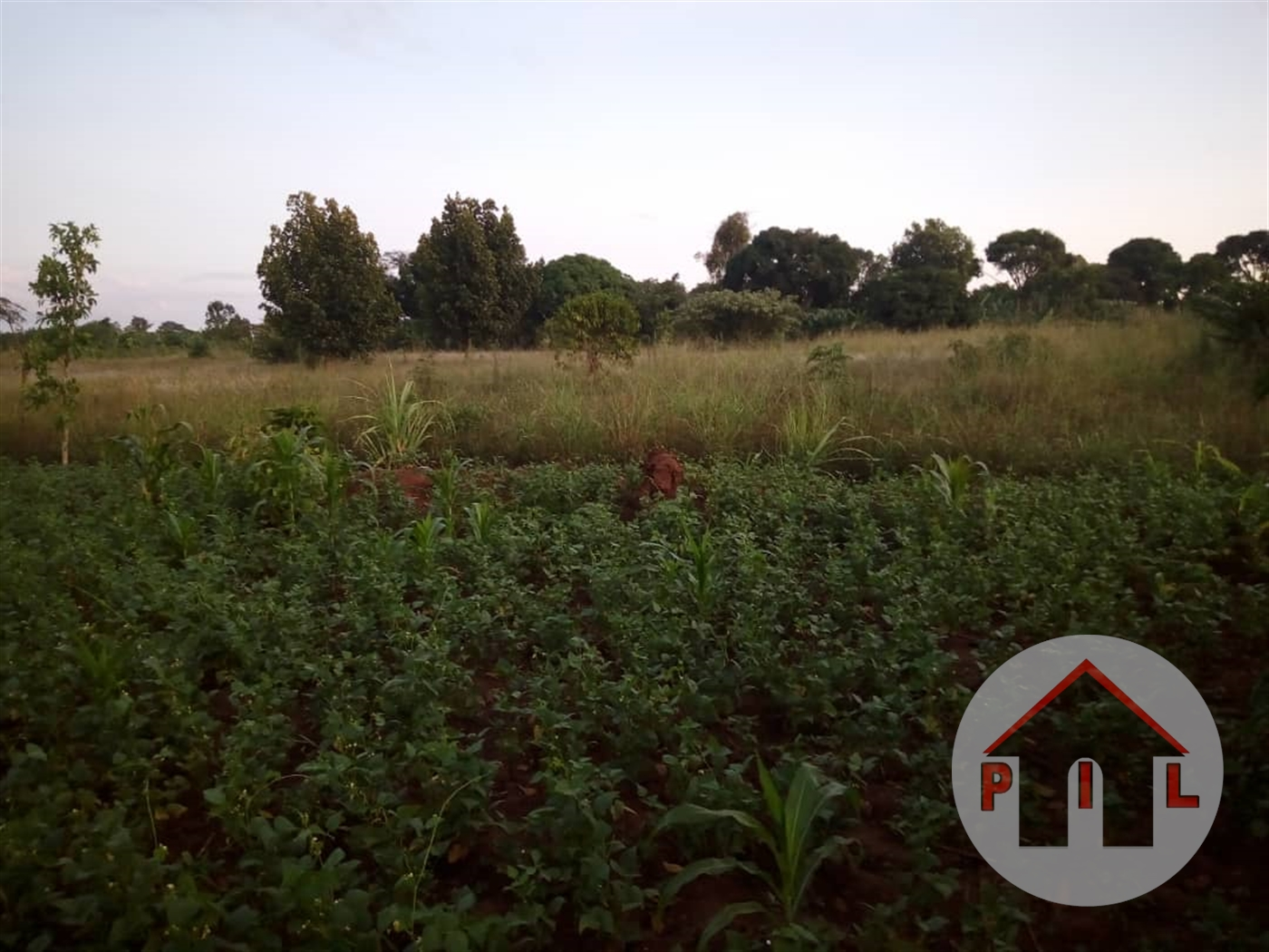 Residential Land for sale in Kyampisi Mukono