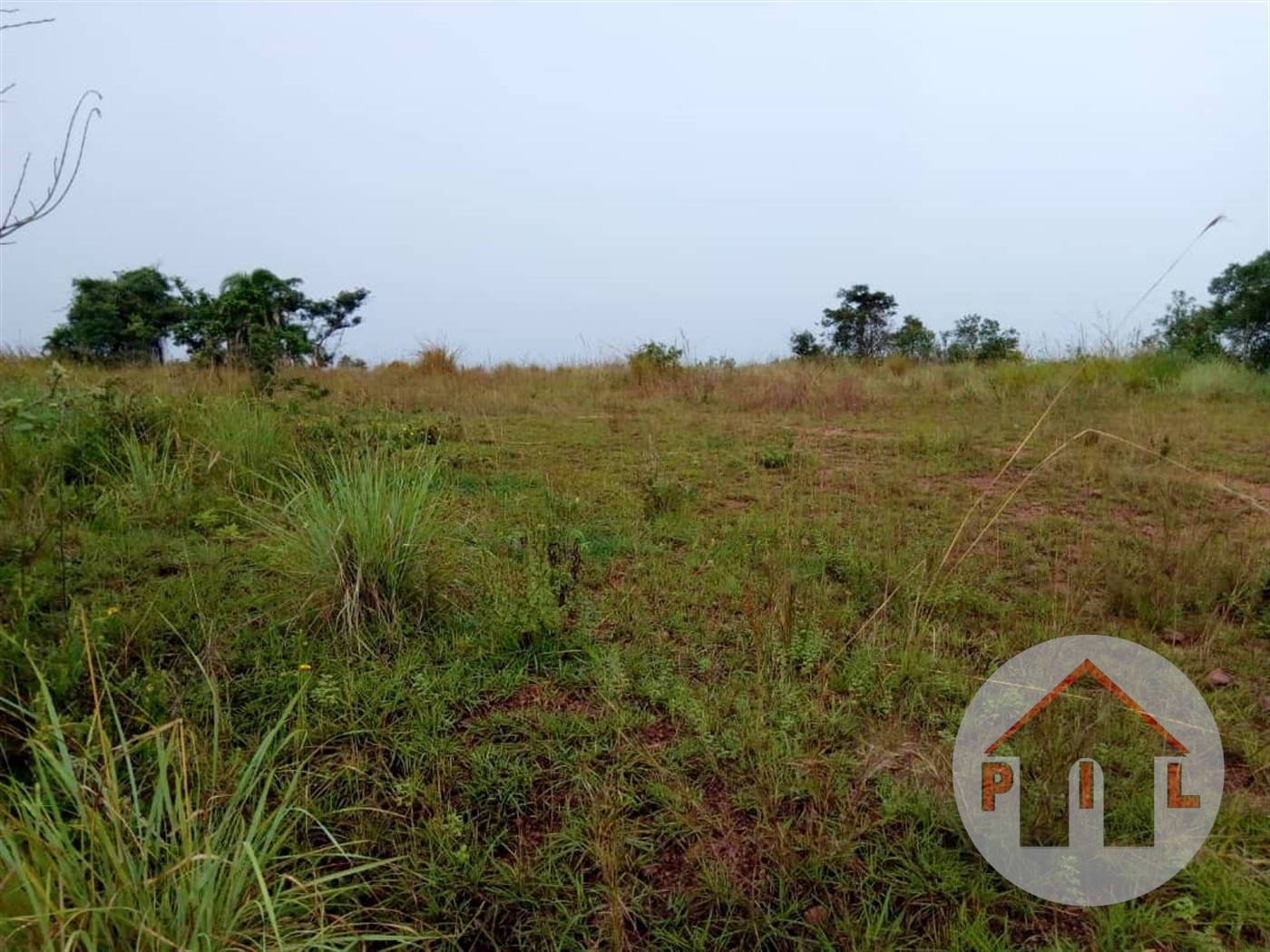 Agricultural Land for sale in Buwama Mpigi
