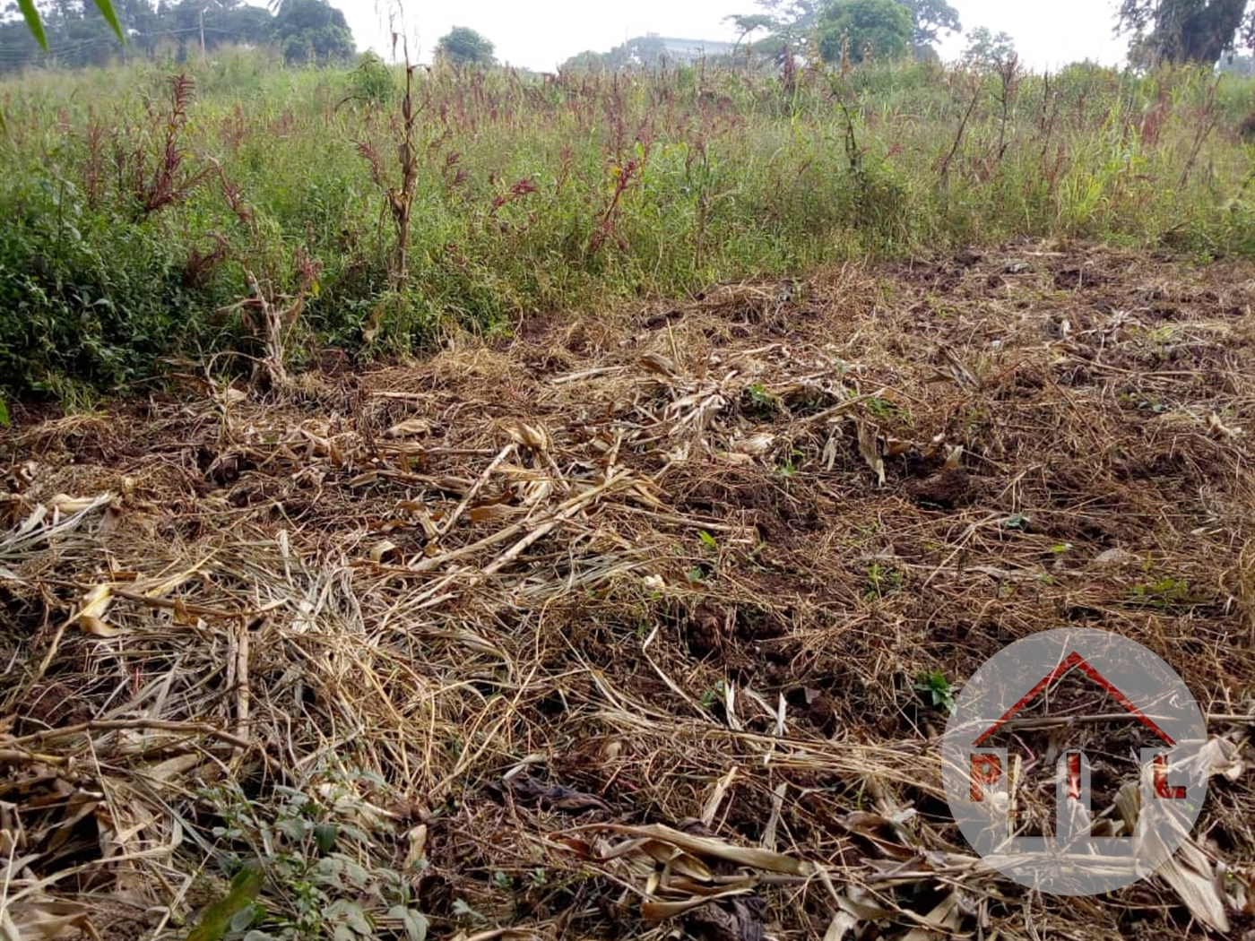 Residential Land for sale in Nalumunye Wakiso