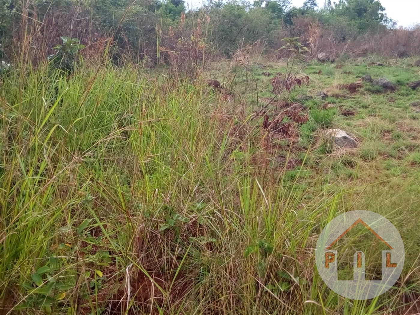 Residential Land for sale in Namaiba Mukono