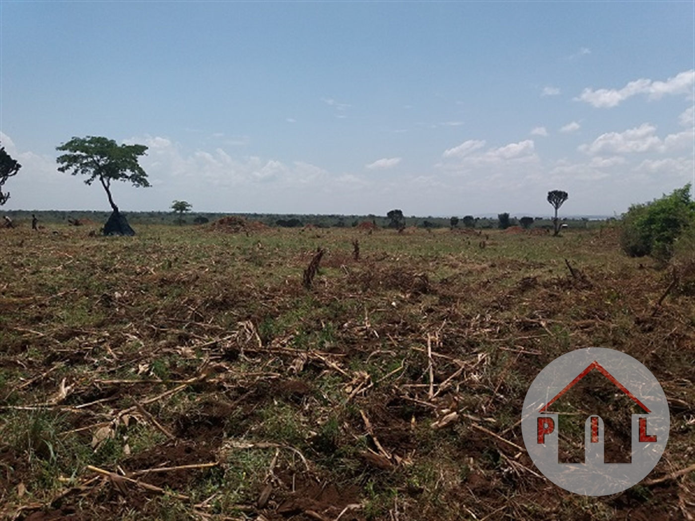 Residential Land for sale in Nsambwe Mukono