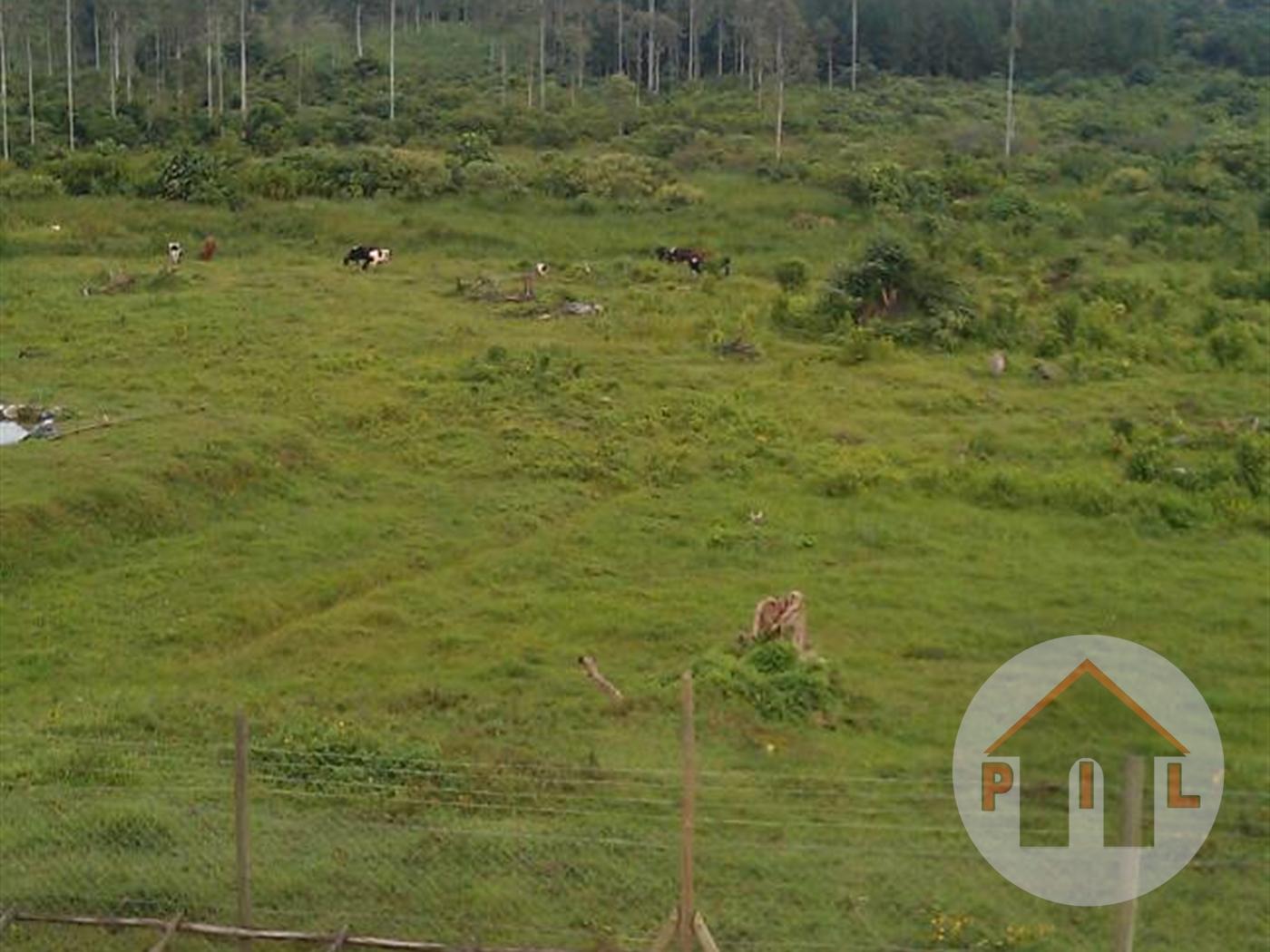 Residential Land for sale in Nkonkojeru Wakiso
