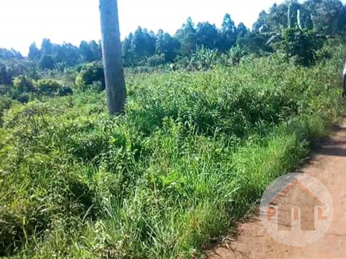 Agricultural Land for sale in Kamengo Mpigi