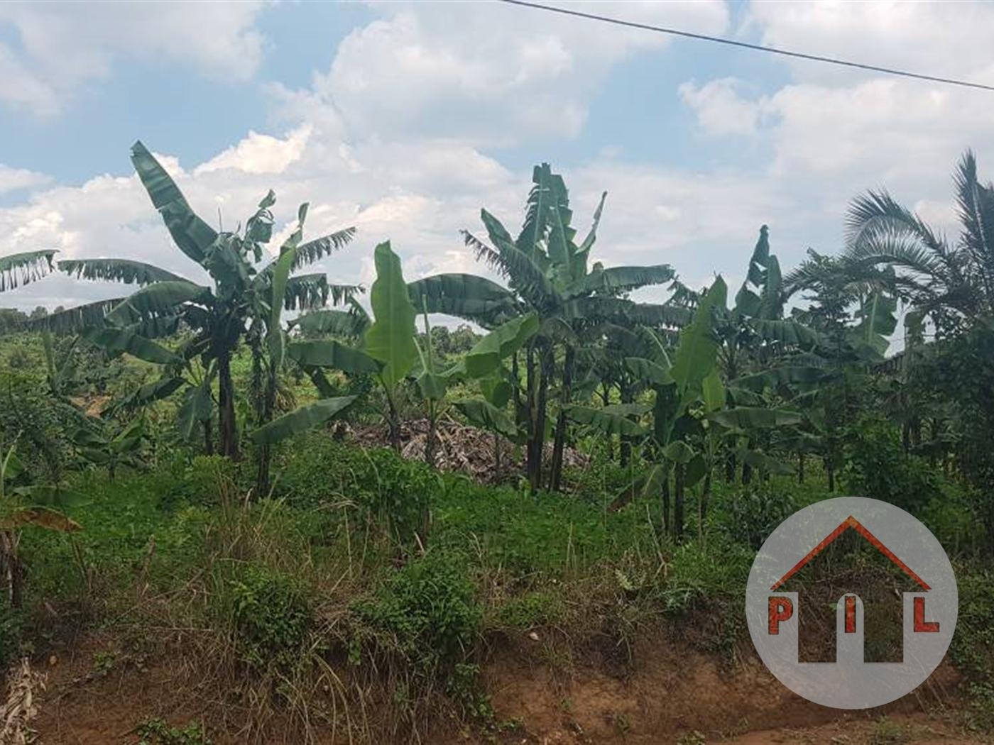 Residential Land for sale in Kisozi Wakiso