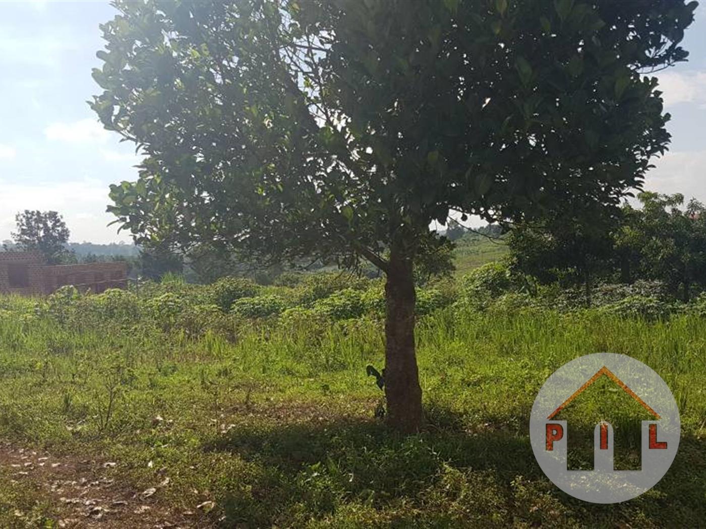 Multi Purpose Land for sale in Kiti Wakiso