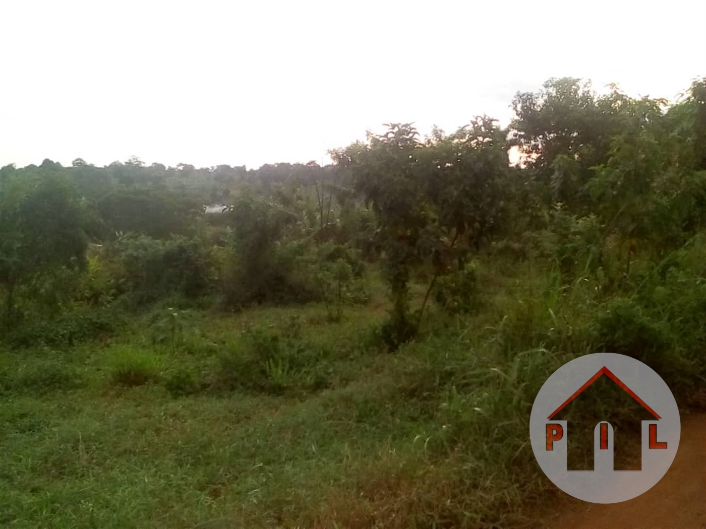 Agricultural Land for sale in Kabaaga Luwero