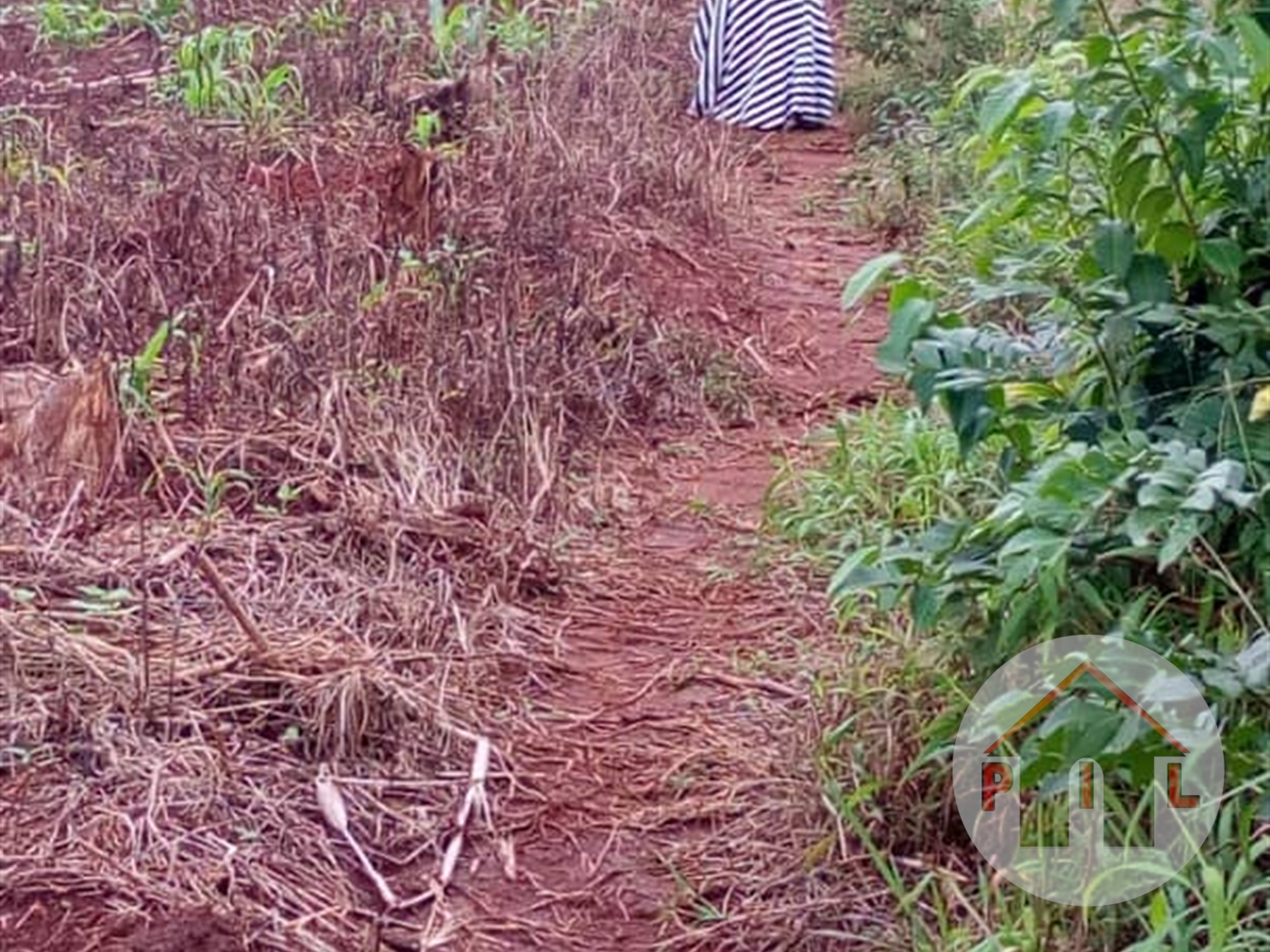 Residential Land for sale in Nakasaja Wakiso