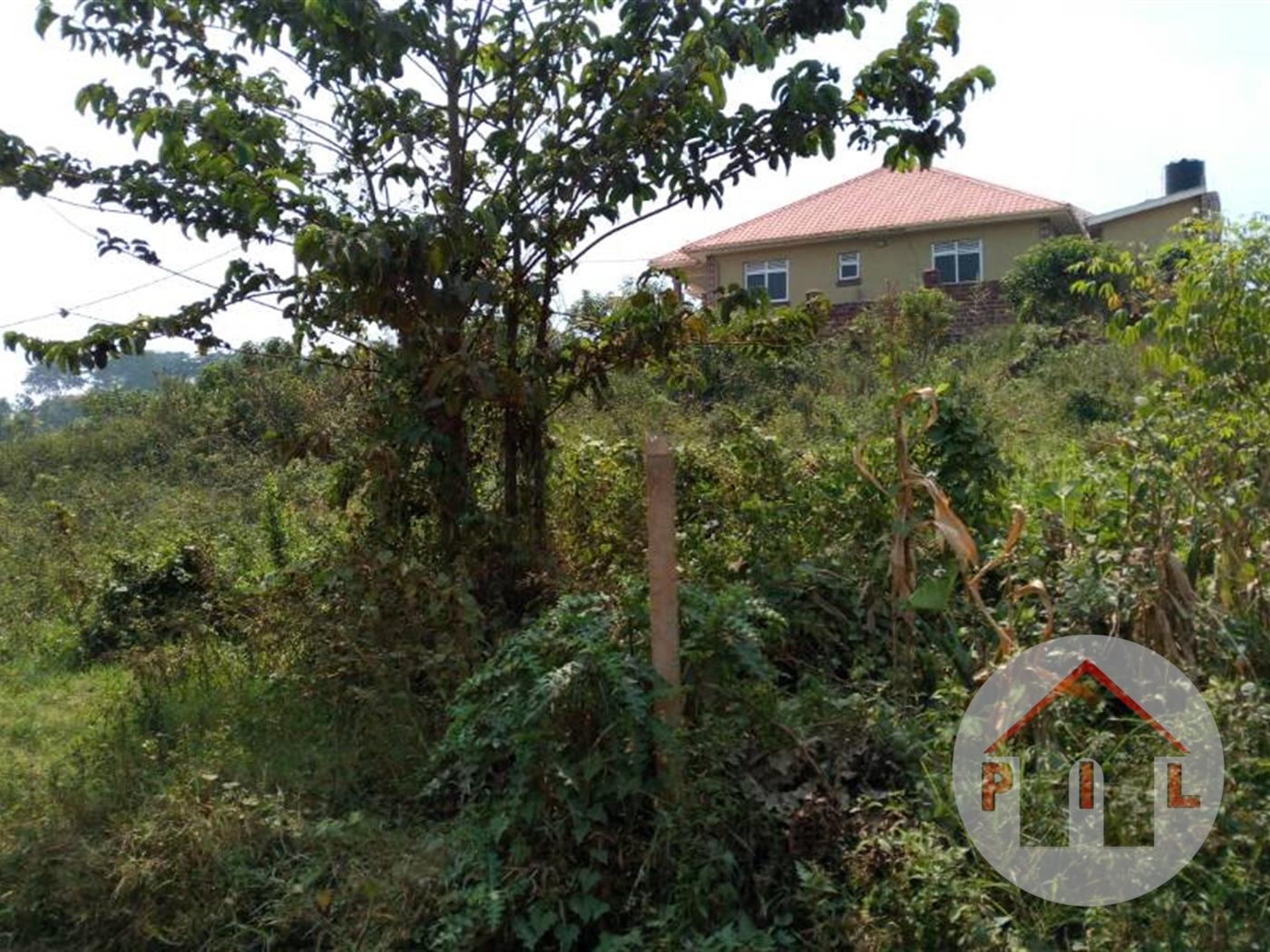 Agricultural Land for sale in Bulindo Wakiso