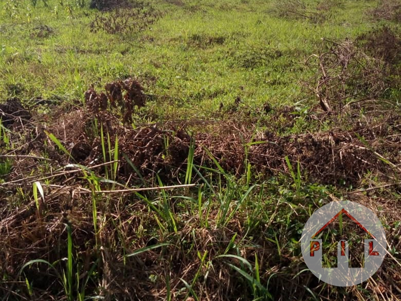 Residential Land for sale in Akright Wakiso