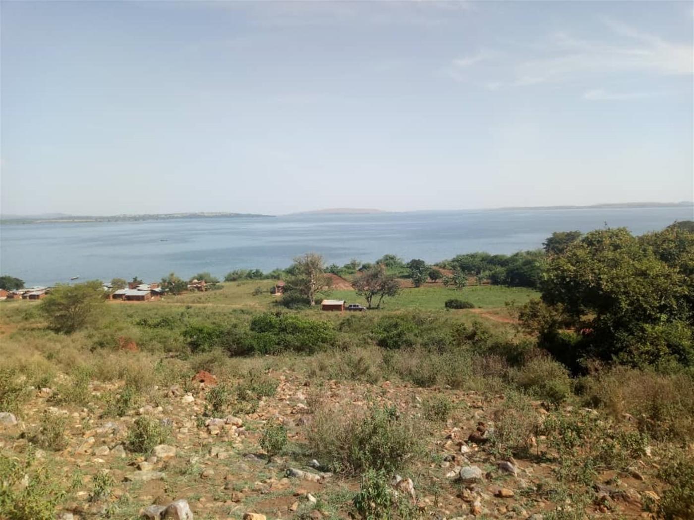 Multi Purpose Land for sale in Bukaya Jinja