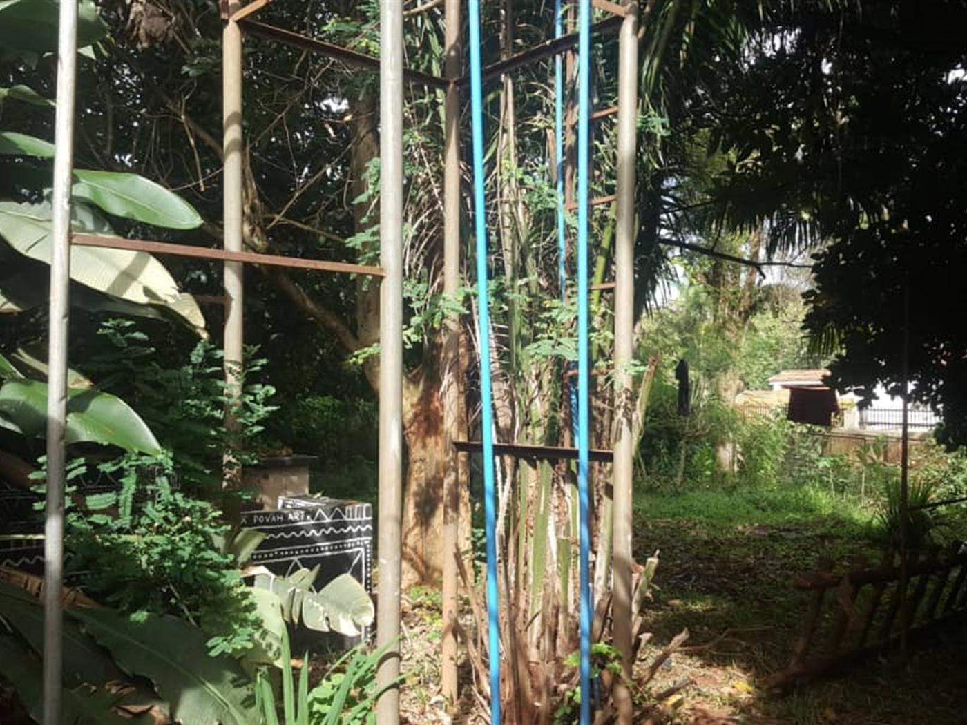 Mansion for rent in Muyenya Kampala