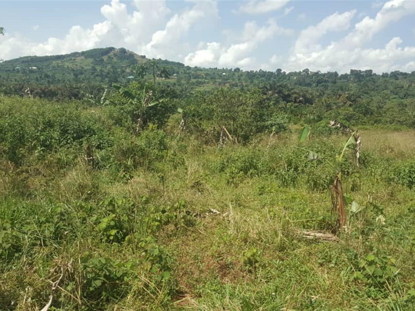 Residential Land for sale in Nakawuku Wakiso