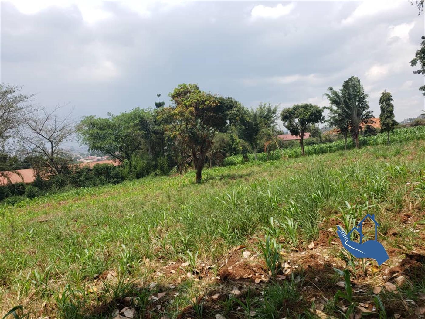 Residential Land for sale in Kigo Wakiso