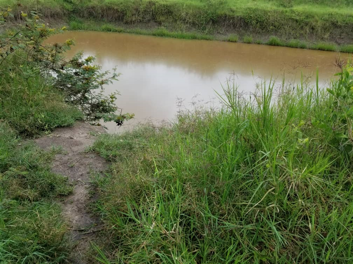 Agricultural Land for sale in Ggomba Butambala