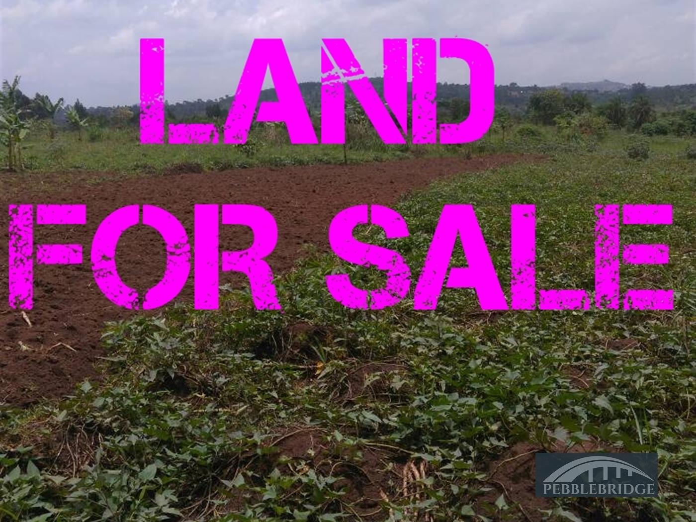 Residential Land for sale in Nkumba Mpigi
