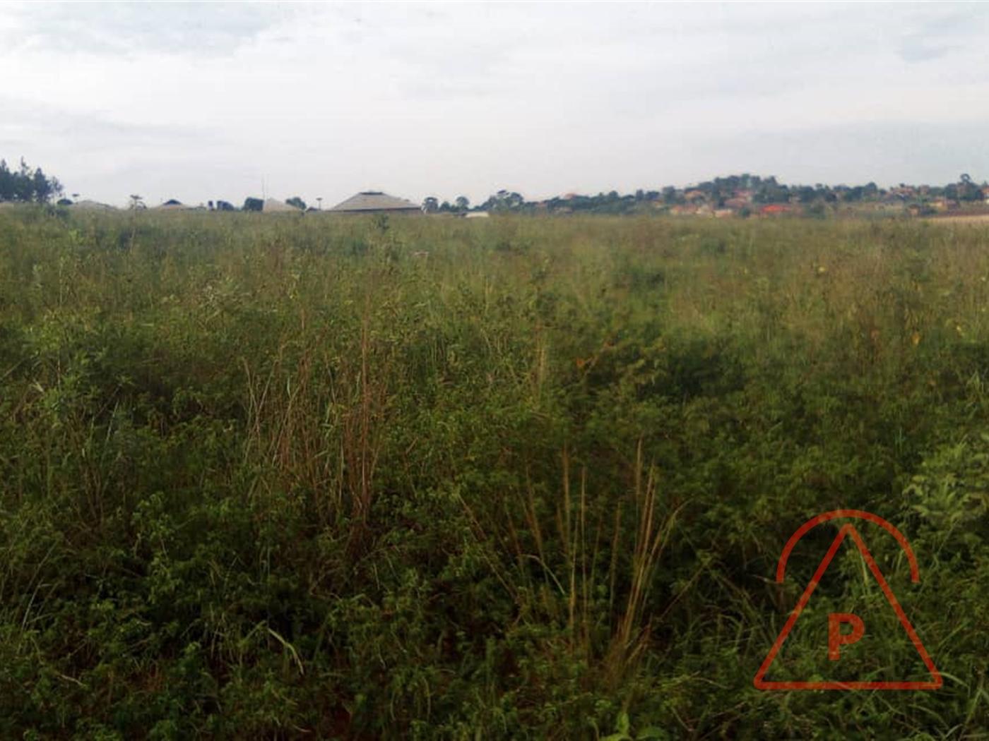 Industrial Land for sale in Sonde Mukono