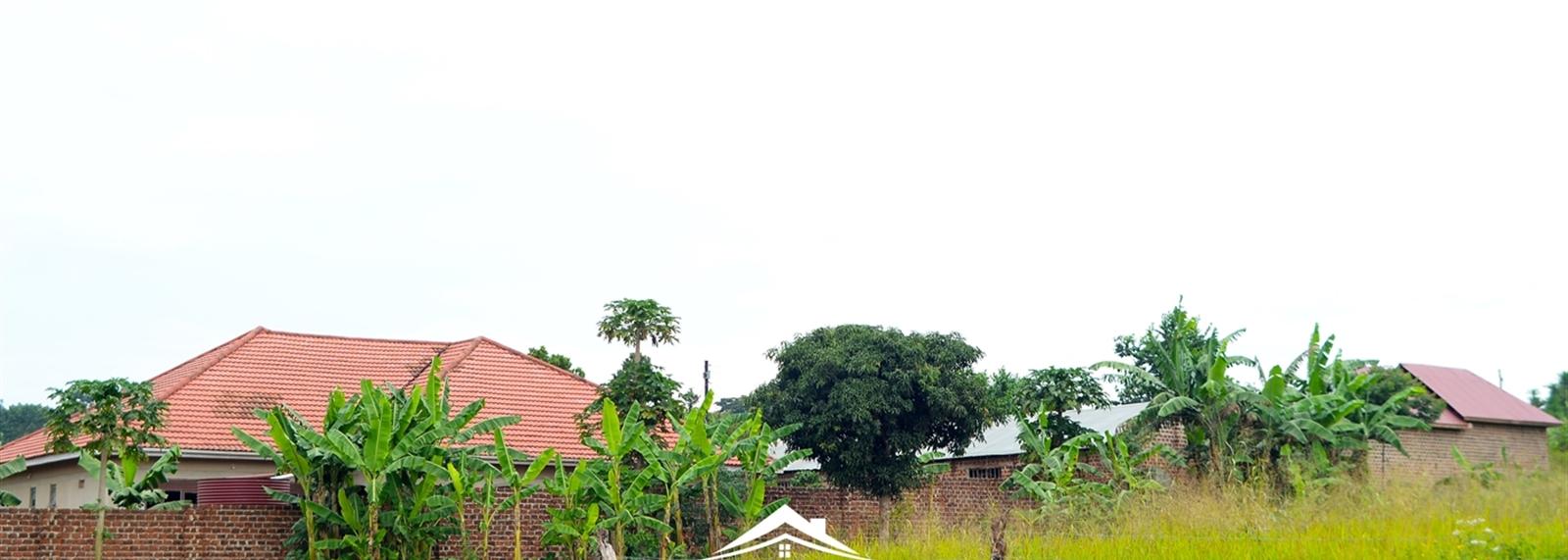 Nsambwe