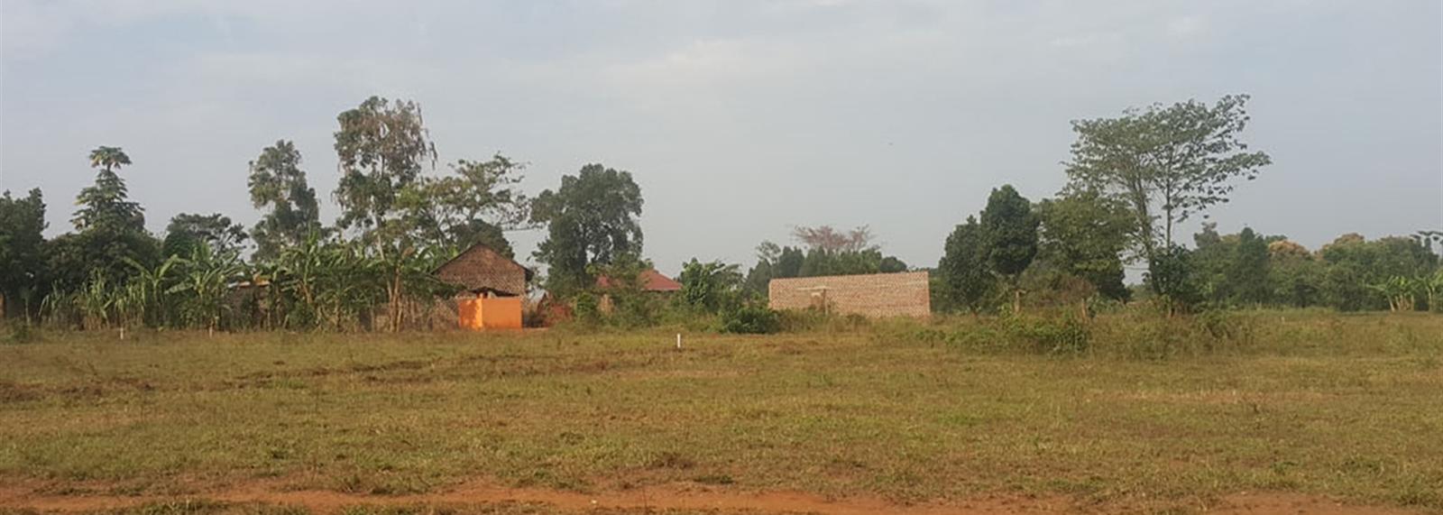 Kiyunga