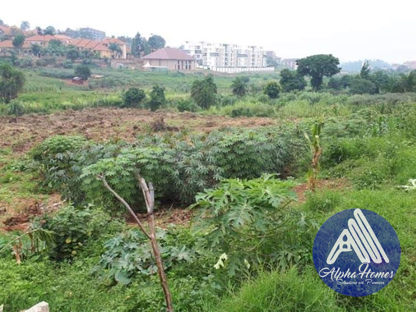 Agricultural Land for rent in Naalya Kampala