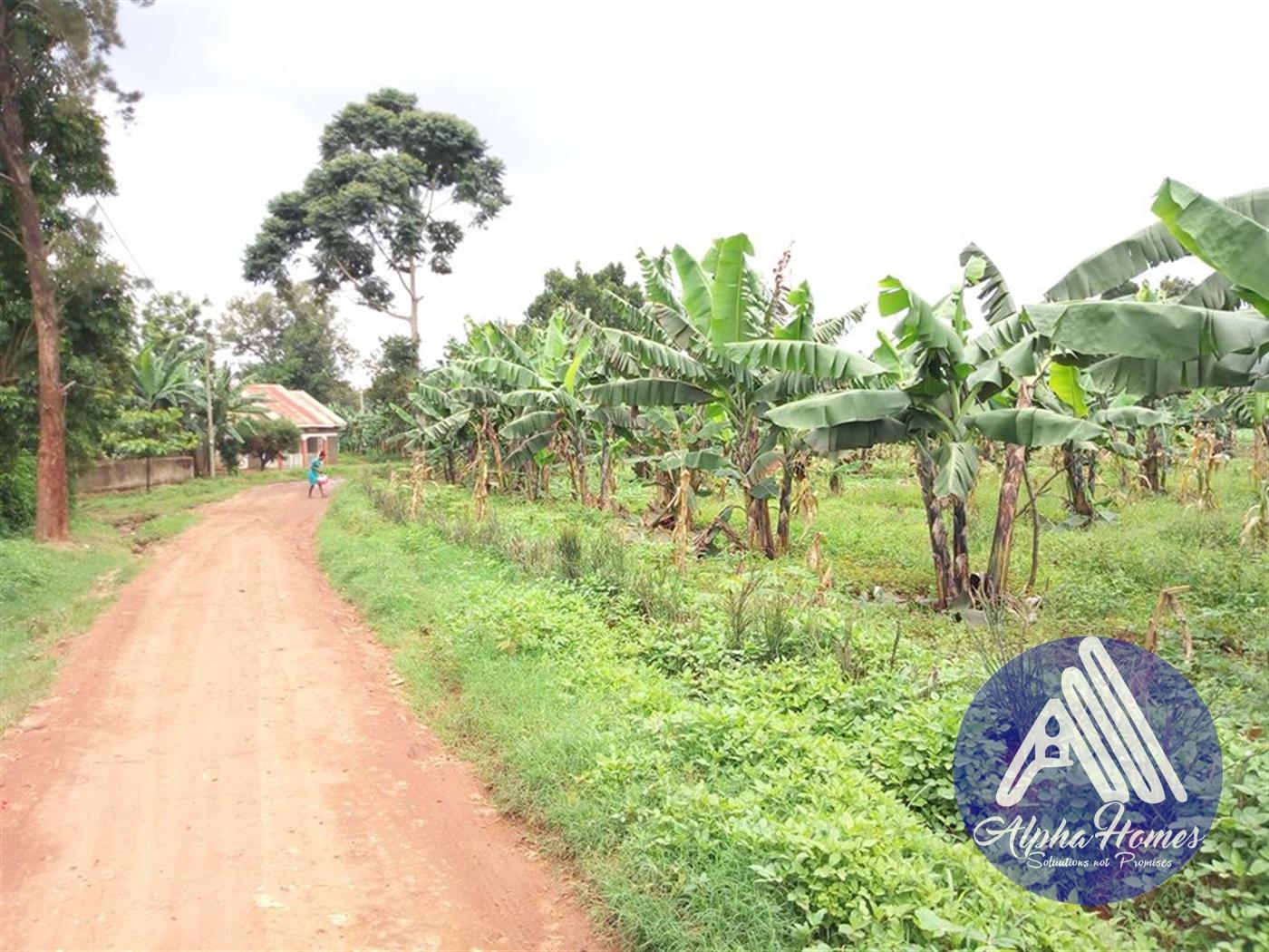 Residential Land for sale in Bweyogerere Wakiso
