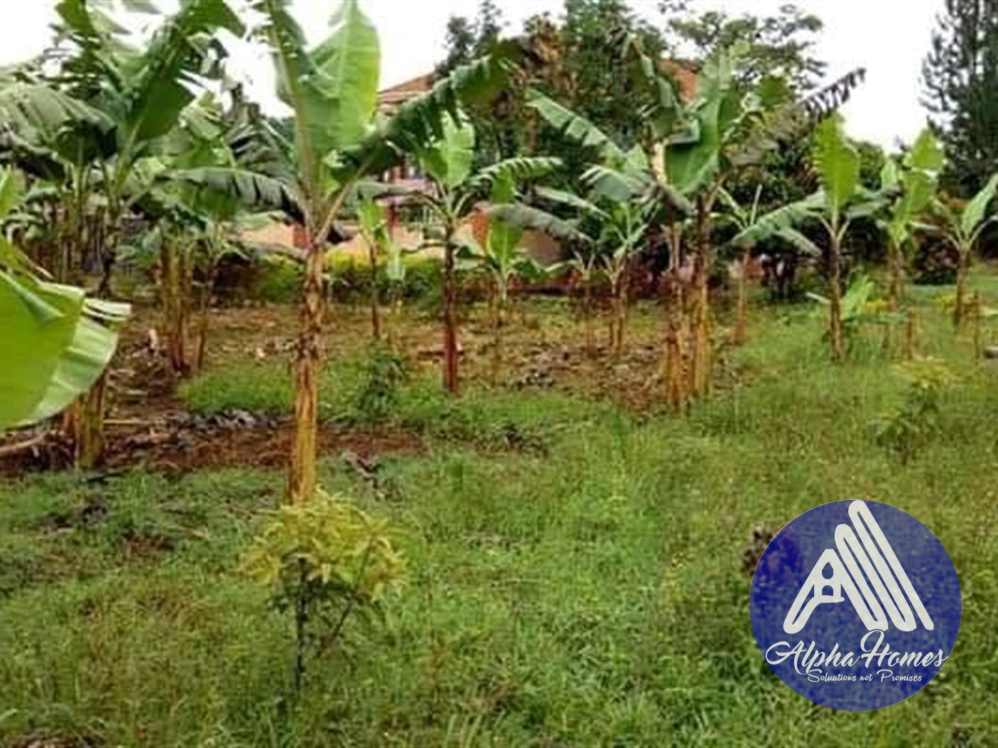 Residential Land for sale in Seeta Mukono