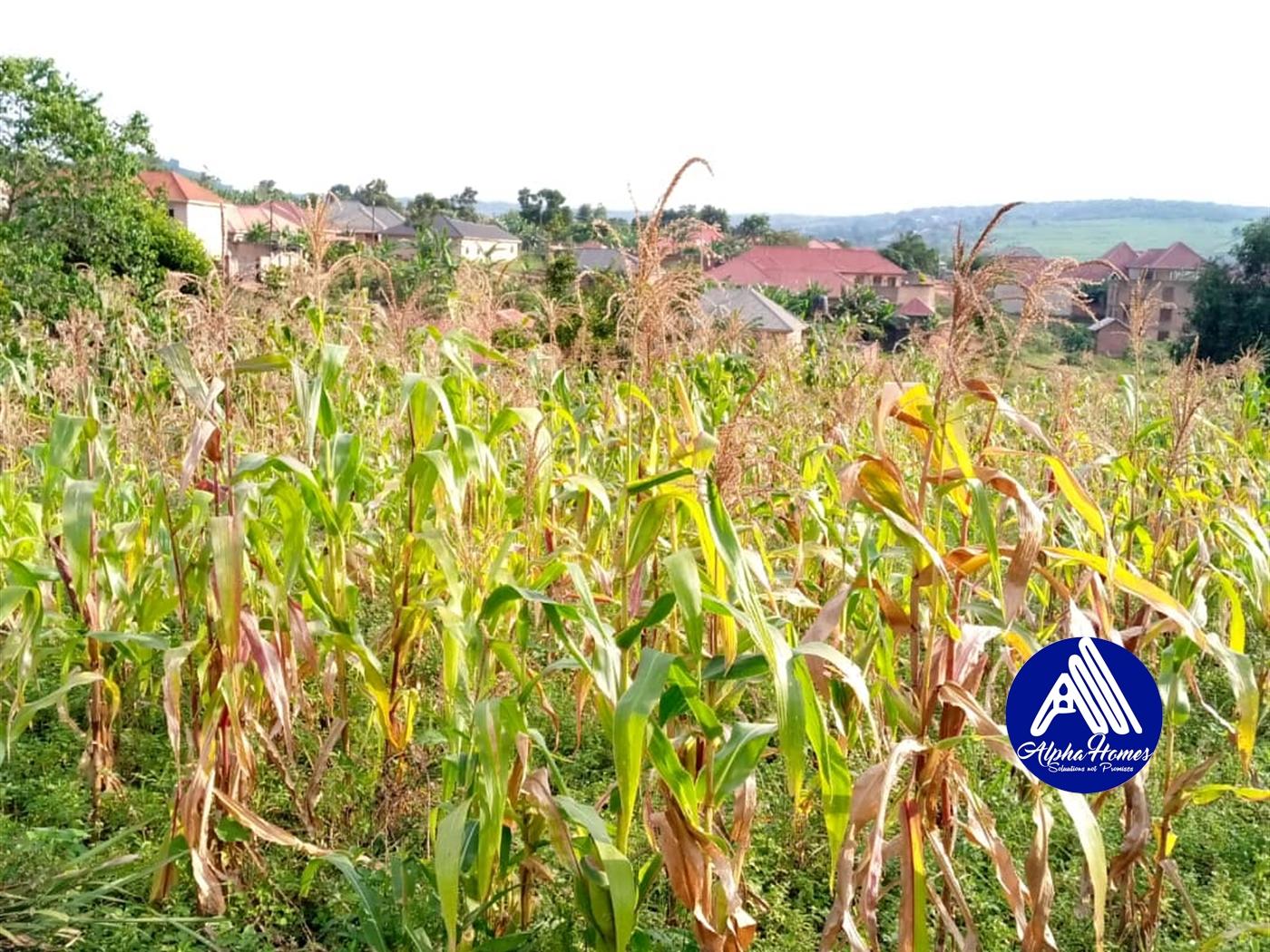 Residential Land for sale in Seguku Wakiso
