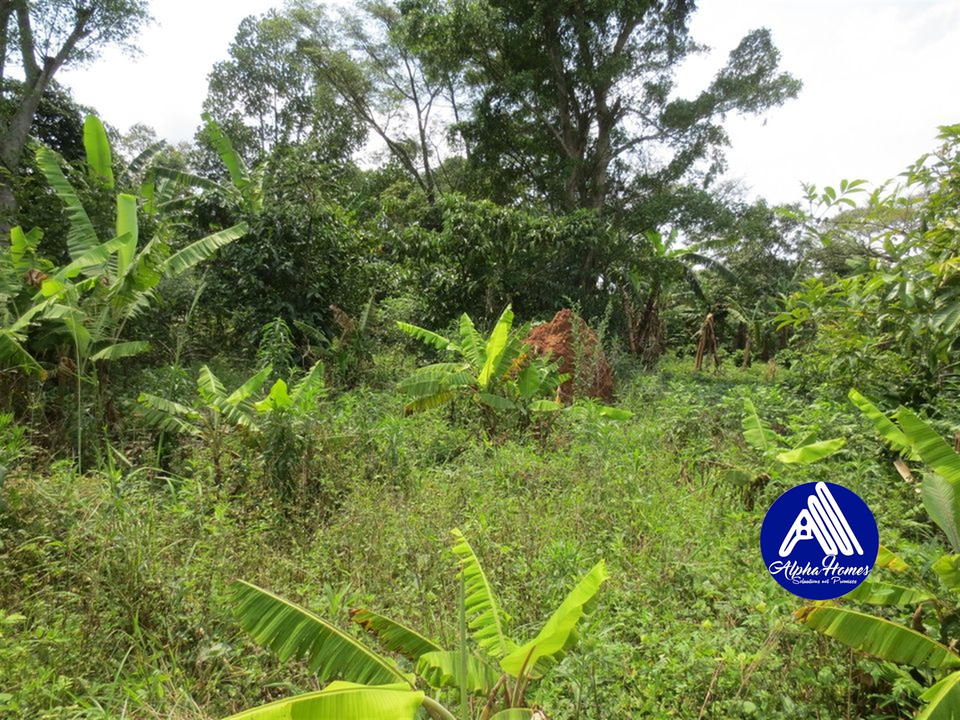Residential Land for sale in Gayaza Kampala