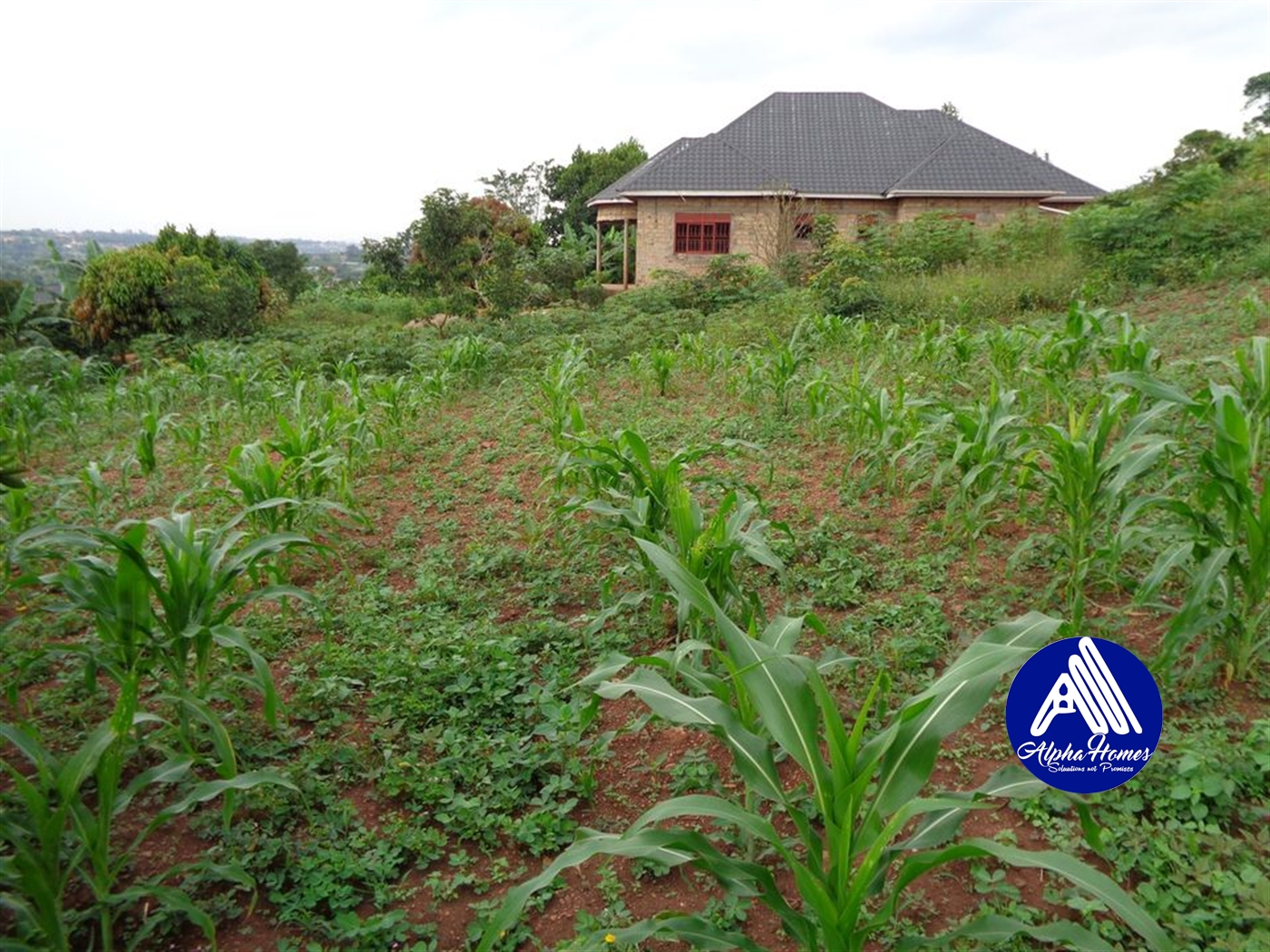 Residential Land for sale in Gayaza Wakiso